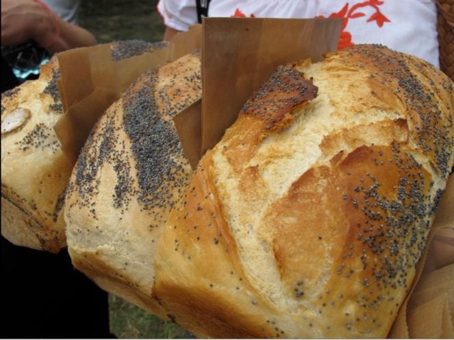 Breads form the Szcześni bakery