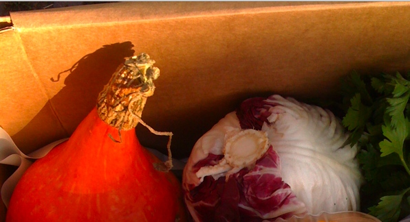 Pumpkin and Radicchio from Hania, Jola and Ludwik