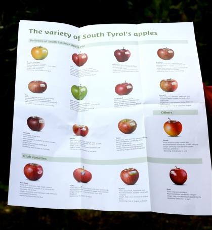 Jabłka z Południowego Tyrolu