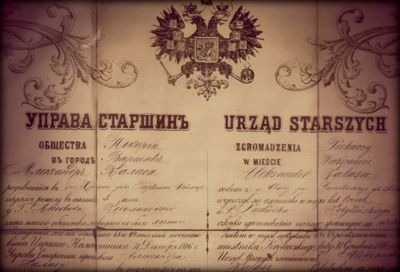 Dyplom Aleksandra Kałasy