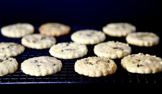 Ciasteczka cytrynowo-lawendowe