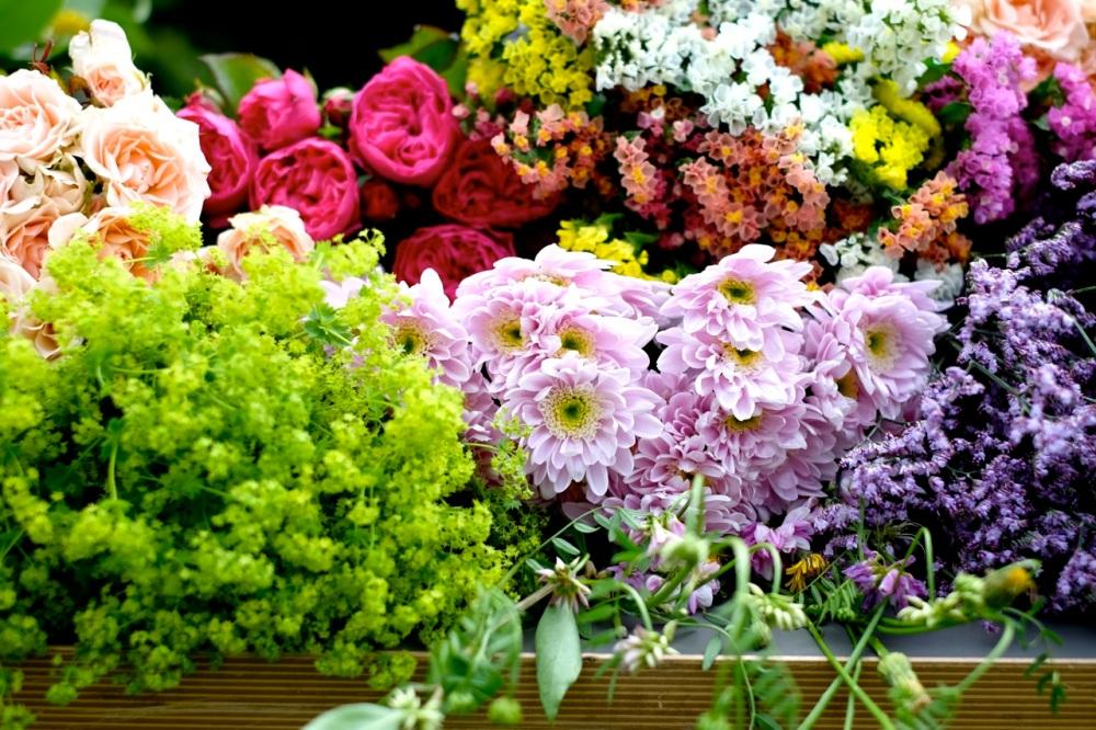 Kwiaty od Kwiaty i Miut