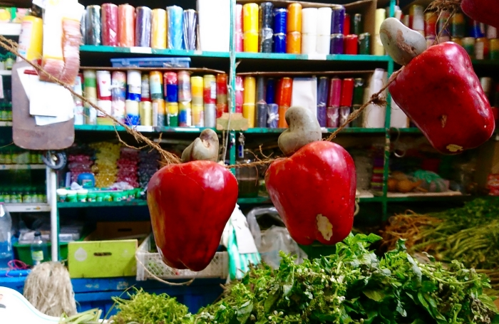 Nerkowce wraz z parzącymi owocami